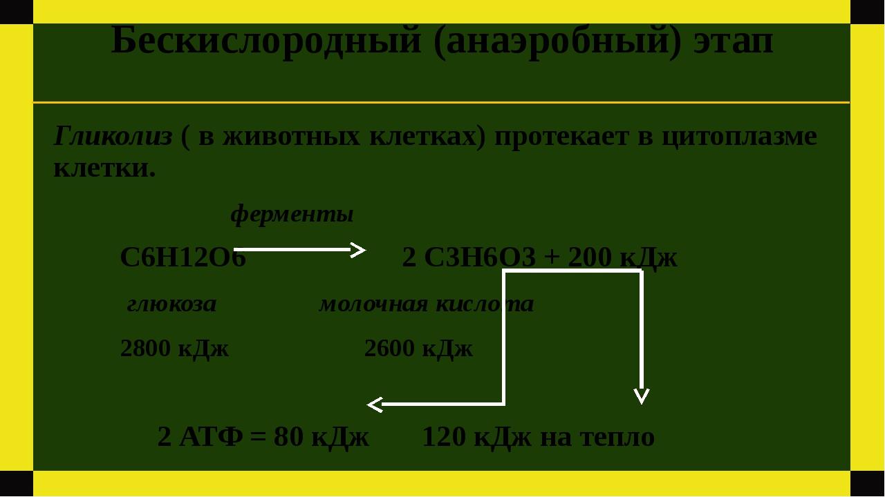 Бескислородный (анаэробный) этап Гликолиз ( в животных клетках) протекает в ц...