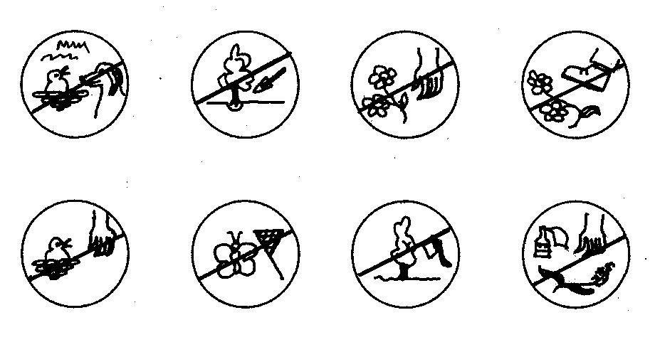Сформулируйте Правило К Условным Знаком Розетка