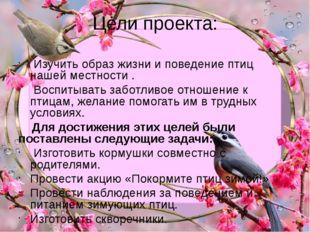 Цели проекта: Изучить образ жизни и поведение птиц нашей местности . Воспитыв