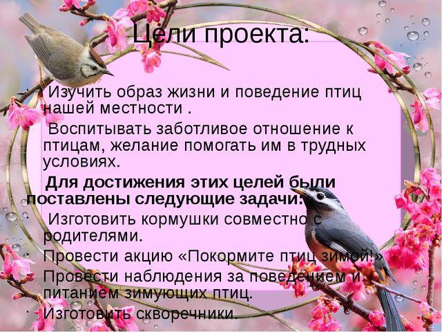 Цели проекта: Изучить образ жизни и поведение птиц нашей местности . Воспитыв...