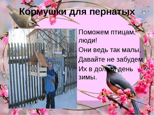 Кормушки для пернатых Поможем птицам, люди! Они ведь так малы, Давайте не заб...