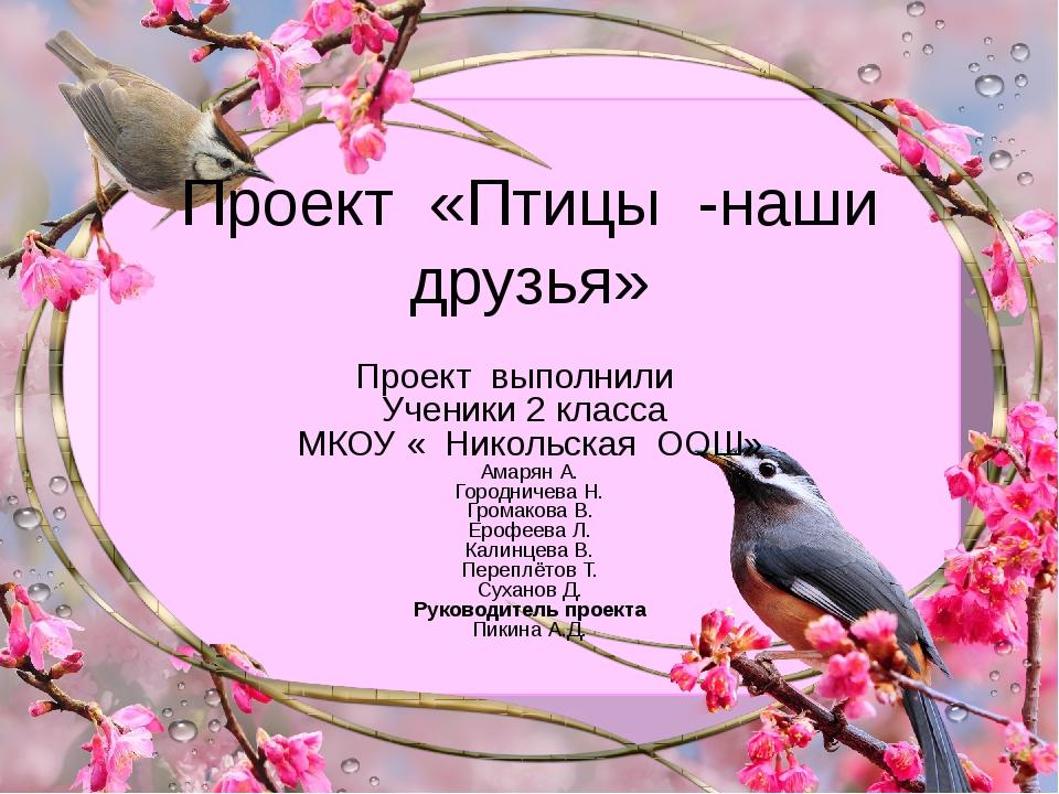 Проект «Птицы -наши друзья» Проект выполнили Ученики 2 класса МКОУ « Никольск...