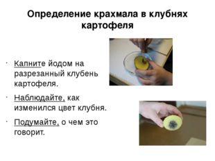 Определение крахмала в клубнях картофеля Капните йодом на разрезанный клубень