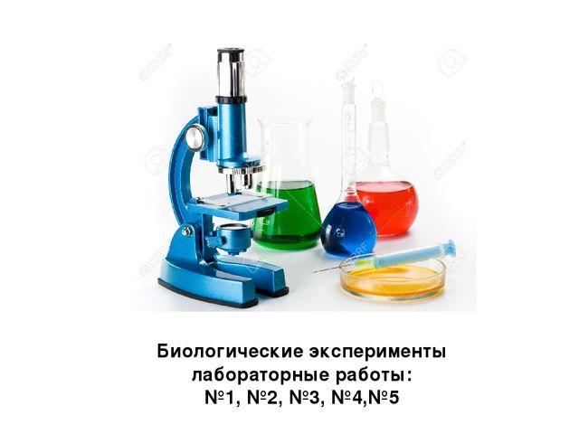 Биологические эксперименты лабораторные работы: №1, №2, №3, №4,№5