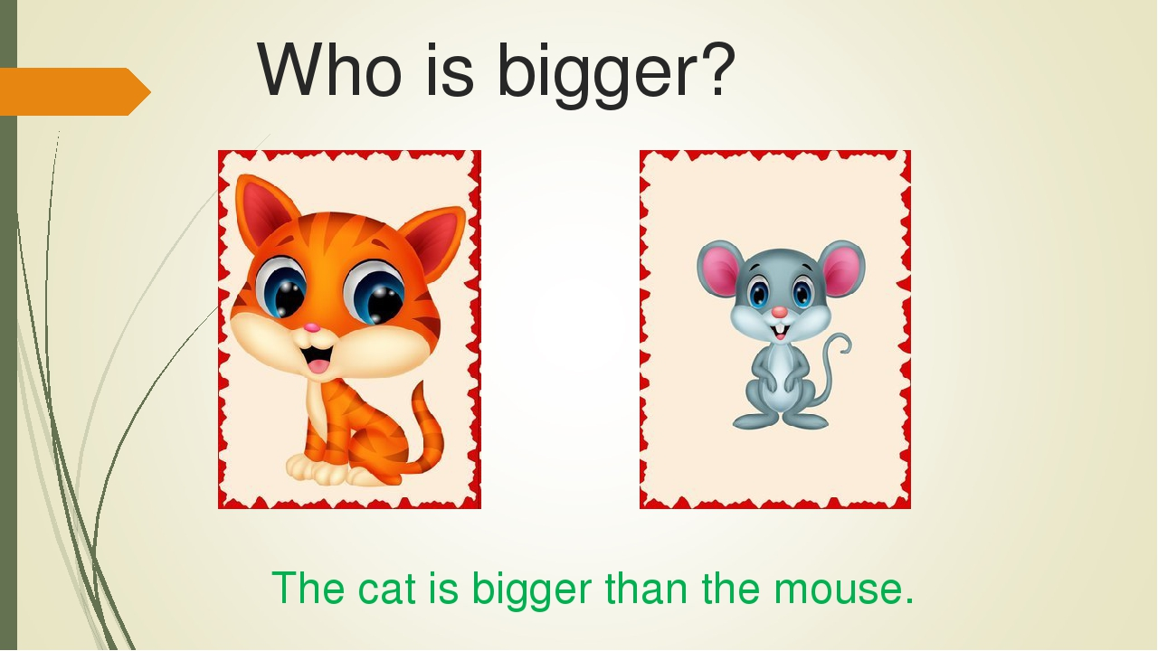 Who is bigger? The cat is bigger than the mouse.