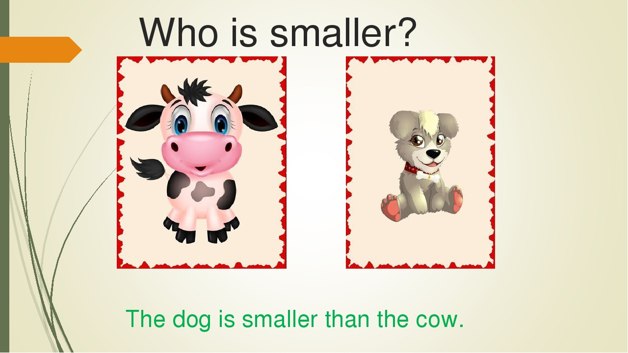 Who is smaller? The dog is smaller than the cow.