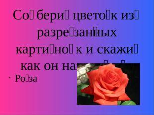 Со̄бери́ цвето́к из̄ разре́зан̅ных карти́но̄к и скажи́ как он называ́ет̅ся Ро