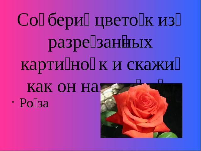 Со̄бери́ цвето́к из̄ разре́зан̅ных карти́но̄к и скажи́ как он называ́ет̅ся Ро...