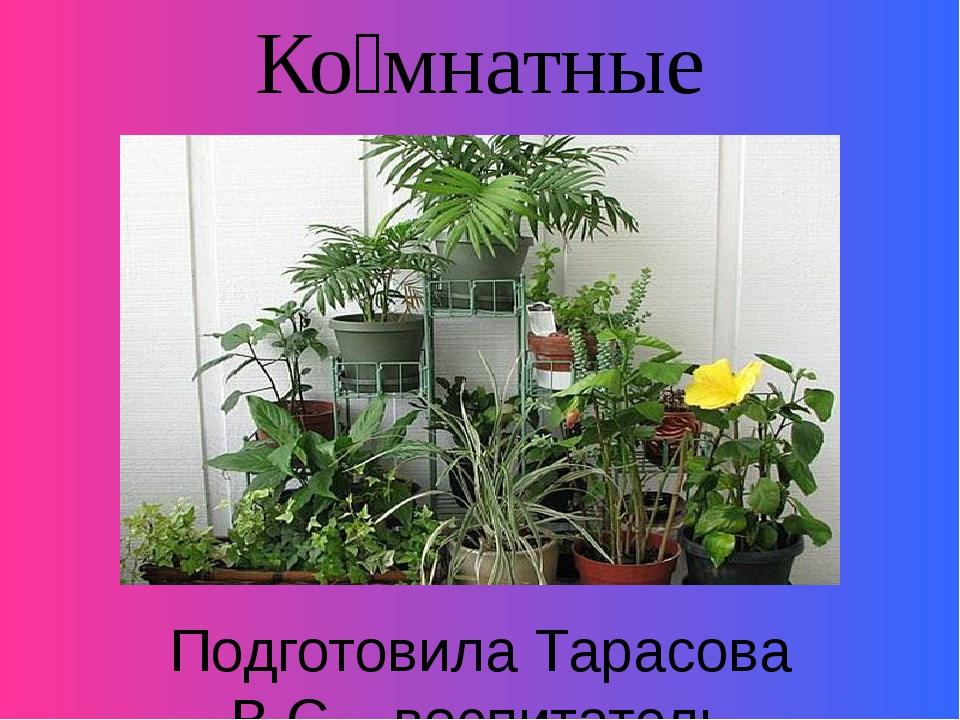 Ко́мнатные расте́ния . Подготовила Тарасова В.С. , воспитатель ГБОУ АО «Вычег...