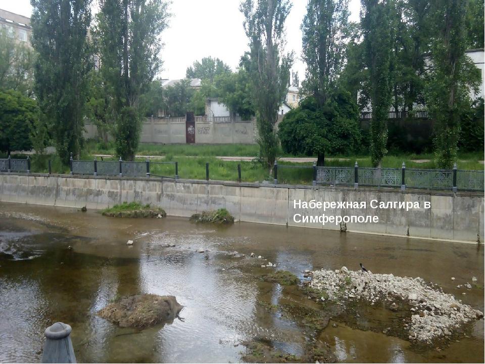 Набережная Салгира в Симферополе