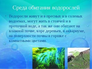 Среда обитания водорослей Водоросли живут и в пресных и в соленых водоемах, м