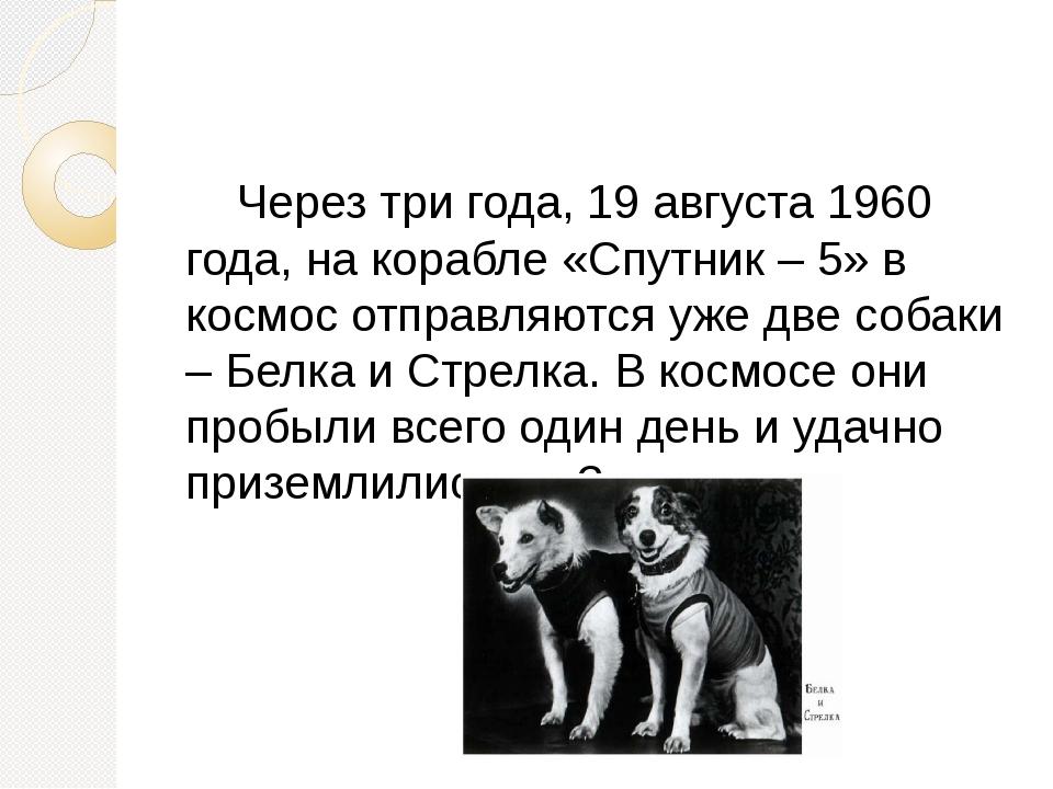 Через три года, 19 августа 1960 года, на корабле «Спутник – 5» в космос отпр...
