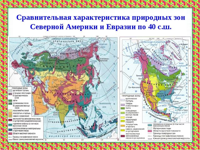 Сравнительная характеристика природных зон Северной Америки и Евразии по 40 с...