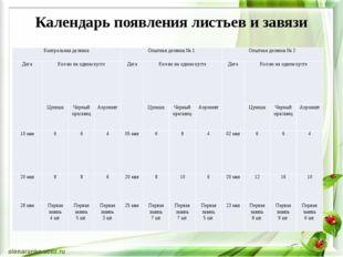 Календарь появления листьев и завязи Контрольная делянка Опытная делянка № 1