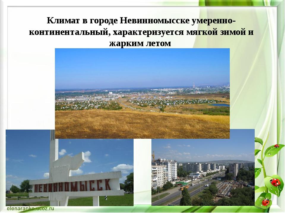 Климат в городе Невинномысске умеренно-континентальный, характеризуется мягко...