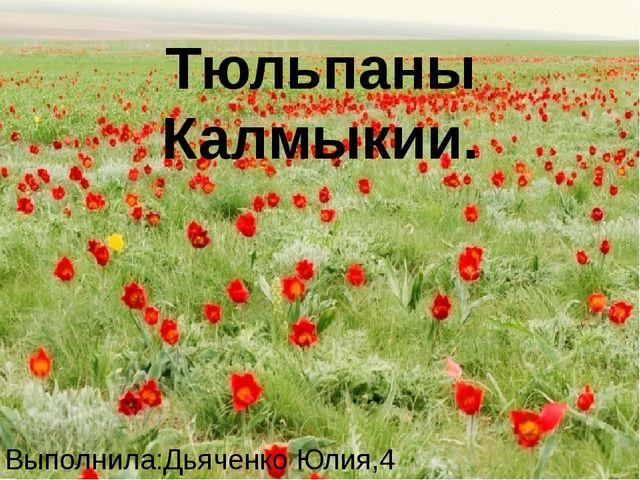 Тюльпаны Калмыкии. Выполнила:Дьяченко Юлия,4 «В»