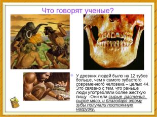 Что говорят ученые? У древних людей было на 12 зубов больше, чем у самого зуб