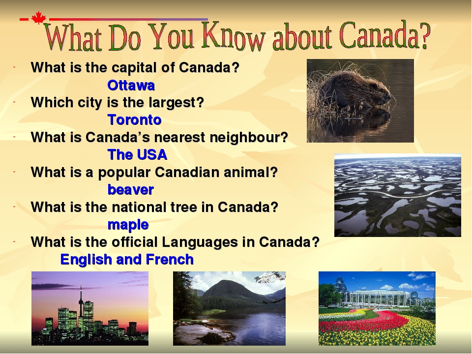 What is the capital of Canada? Ottawa  Which city is the largest? Toro...