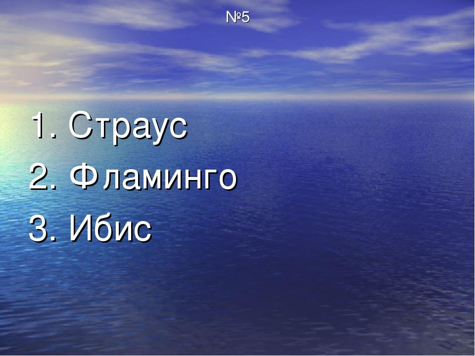 №5 1. Страус 2. Фламинго 3. Ибис