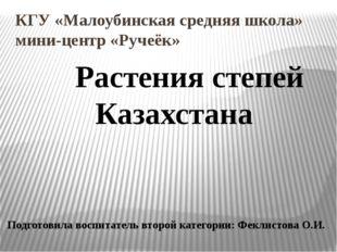 КГУ «Малоубинская средняя школа» мини-центр «Ручеёк» Растения степей Казахст