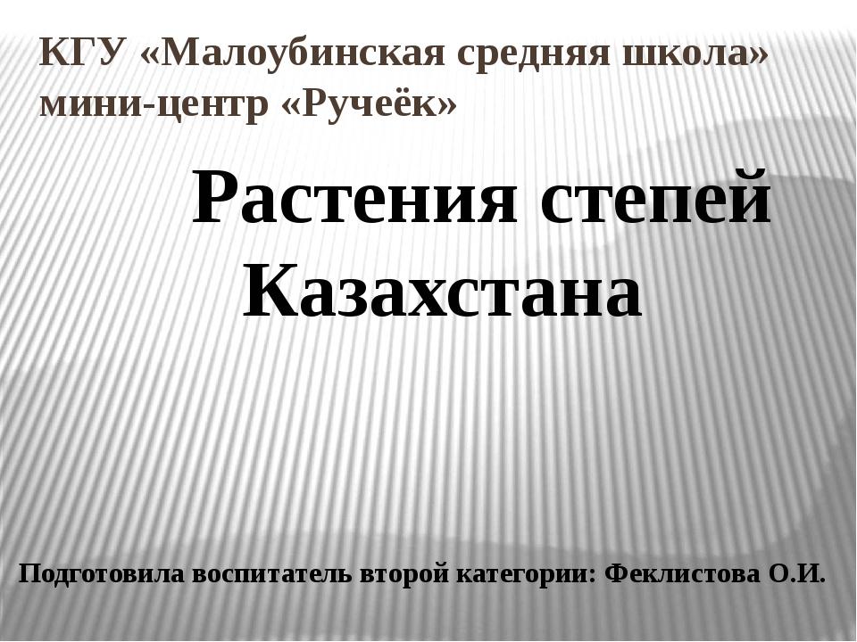 КГУ «Малоубинская средняя школа» мини-центр «Ручеёк» Растения степей Казахст...