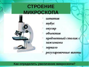 СТРОЕНИЕ МИКРОСКОПА штатив тубус окуляр объектив предметный столик с зажимами