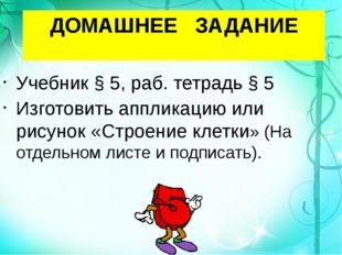 ДОМАШНЕЕ ЗАДАНИЕ Учебник § 5, раб. тетрадь § 5 Изготовить аппликацию или рису