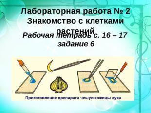Лабораторная работа № 2 Знакомство с клетками растений Рабочая тетрадь с. 16