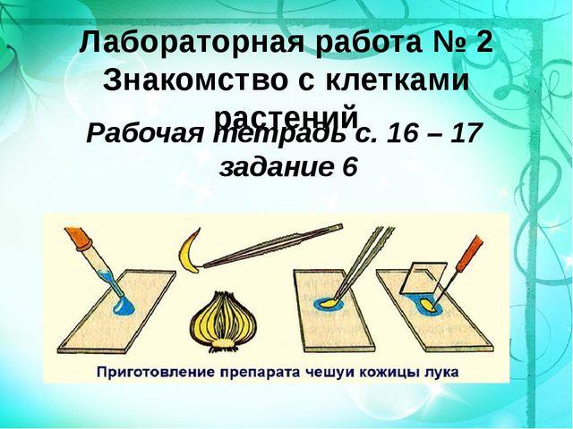 Лабораторная работа № 2 Знакомство с клетками растений Рабочая тетрадь с. 16...