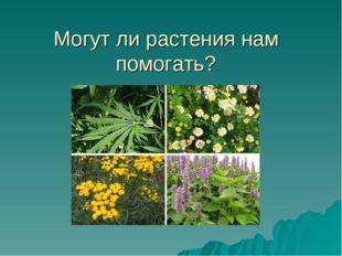 Могут ли растения нам помогать?