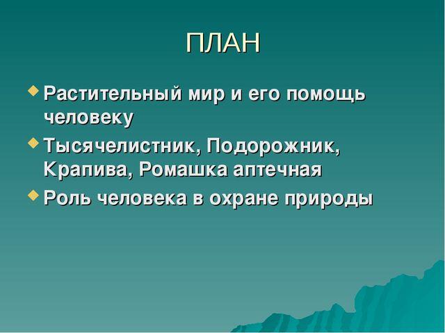 ПЛАН Растительный мир и его помощь человеку Тысячелистник, Подорожник, Крапив...