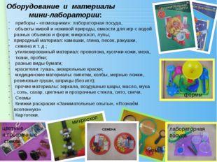 Оборудование и материалы мини-лаборатории: приборы - «помощники»: лабораторн