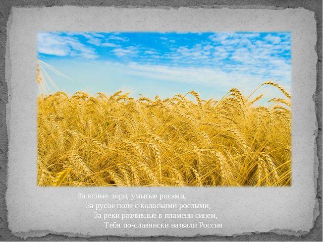 За ясные зори, умытые росами, За русое поле с колосьями рослыми, За реки разл...