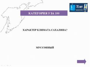 КАТЕГОРИЯ 6 ЗА 300 Город, который расположен на берегу бухты Лососей залива А