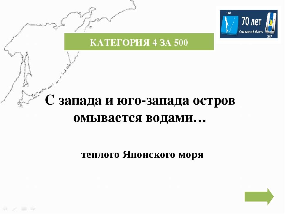 КАТЕГОРИЯ 5 ЗА 300 КОЛИЧЕСТВО ПОЛЕЗНЫХ ИСКОПАЕМЫХ НА САХАЛИНЕ БОЛЕЕ 50