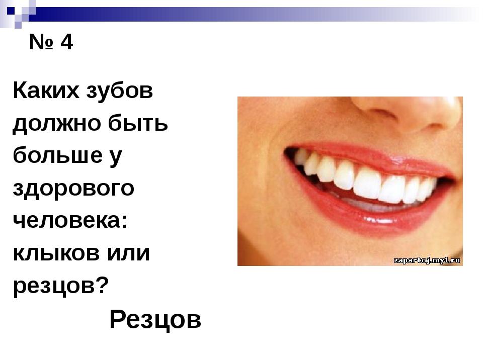 № 4 Каких зубов должно быть больше у здорового человека: клыков или резцов?...