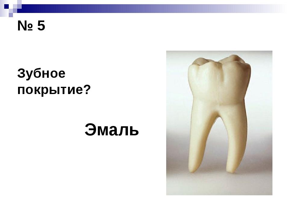 № 5 Зубное покрытие? Эмаль