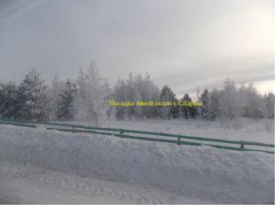 Посадка зимой около с.Спартак