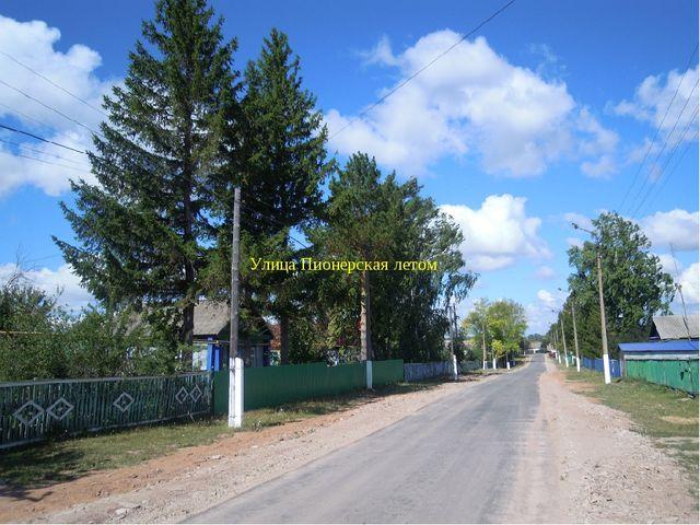 Ул.Пионерская Улица Пионерская летом