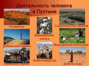 Деятельность человека в Пустыне Добыча воды Выращивание винограда Добыча иско