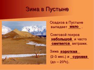Зима в Пустыне Осадков в Пустыне выпадает ______ . Снеговой покров __________