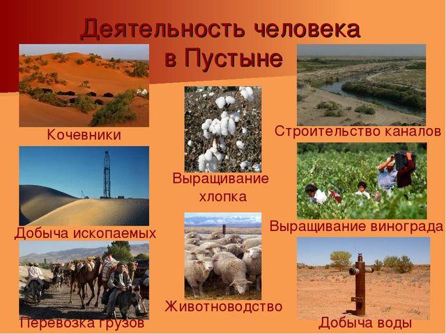 Деятельность человека в Пустыне Добыча воды Выращивание винограда Добыча иско...