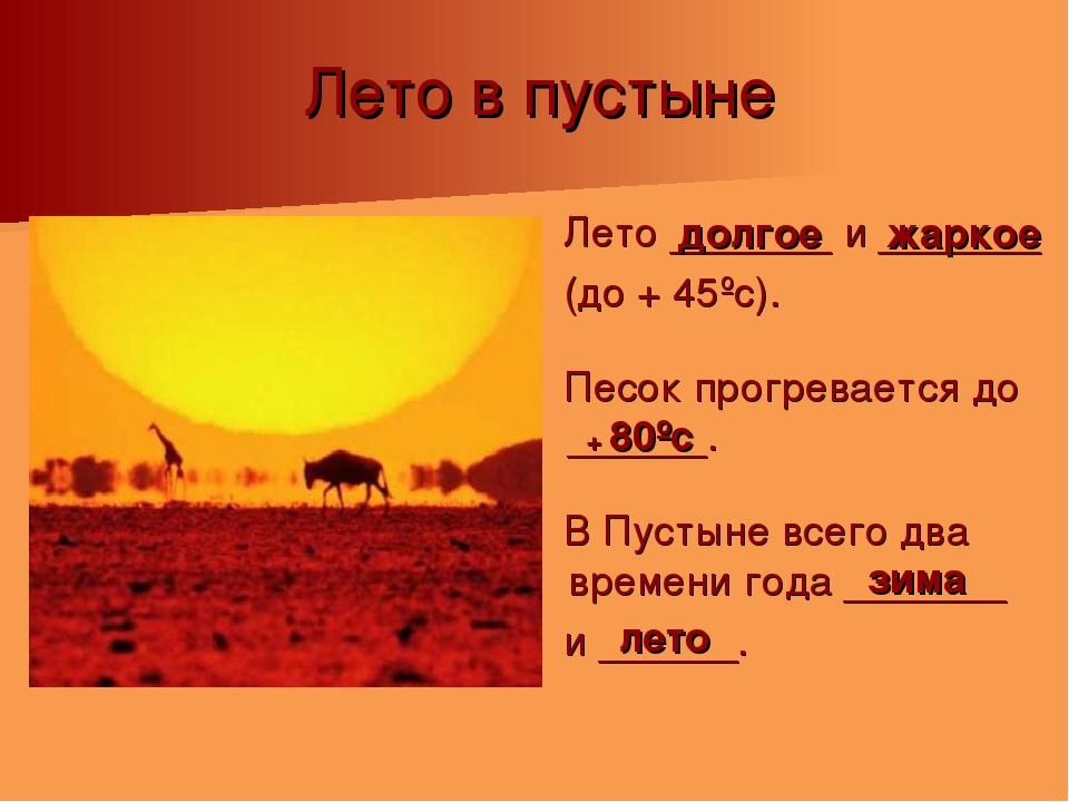 Лето в пустыне Лето _______ и _______ (до + 45ºс). Песок прогревается до ____...