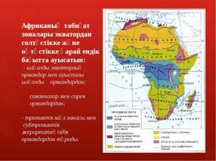 Ылғалды экваторлық ормандар Конго қазаншұңқыры мен Гвинея шығанағы жағала