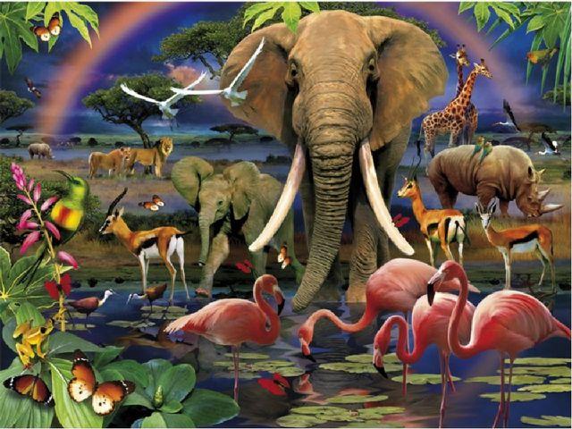 Жауап: Табиғат кешендерінің, яғни, жер бедері, климаты, топырағы, өсімдігі, ж...