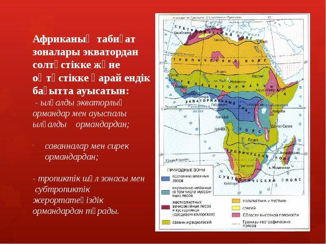 Ылғалды экваторлық ормандар Конго қазаншұңқыры мен Гвинея шығанағы жағала...