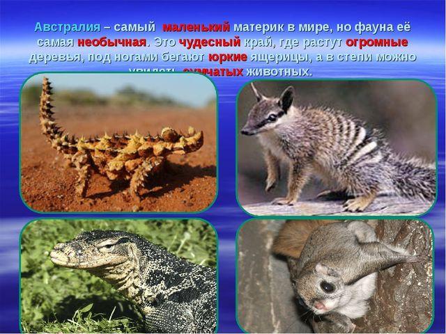 Австралия – самый маленький материк в мире, но фауна её самая необычная. Это...