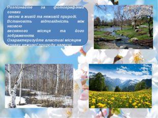 Розпізнайте за фотографіями ознаки весни в живій та неживій природі. Встанов