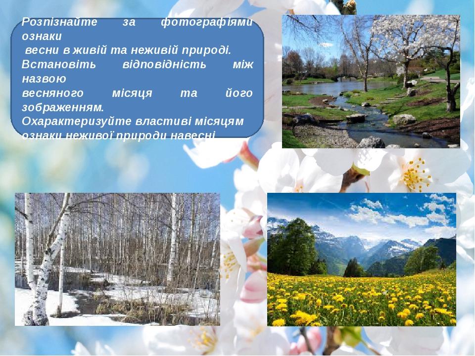 Розпізнайте за фотографіями ознаки весни в живій та неживій природі. Встанов...