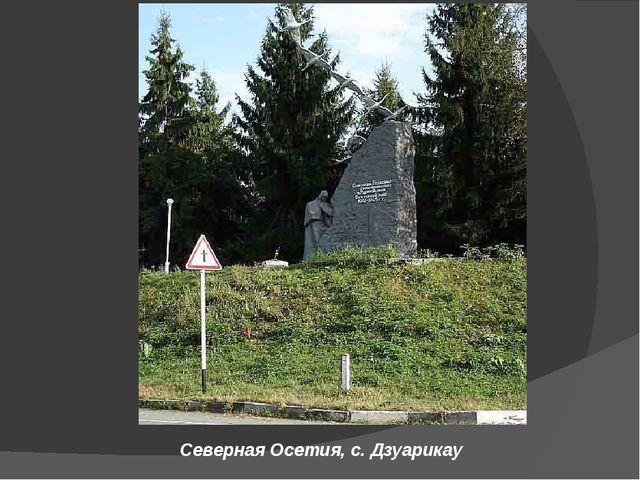 Северная Осетия, с.Дзуарикау